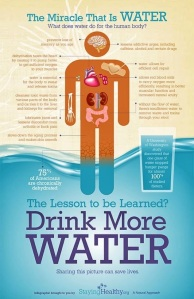 drink-more-water-infographic