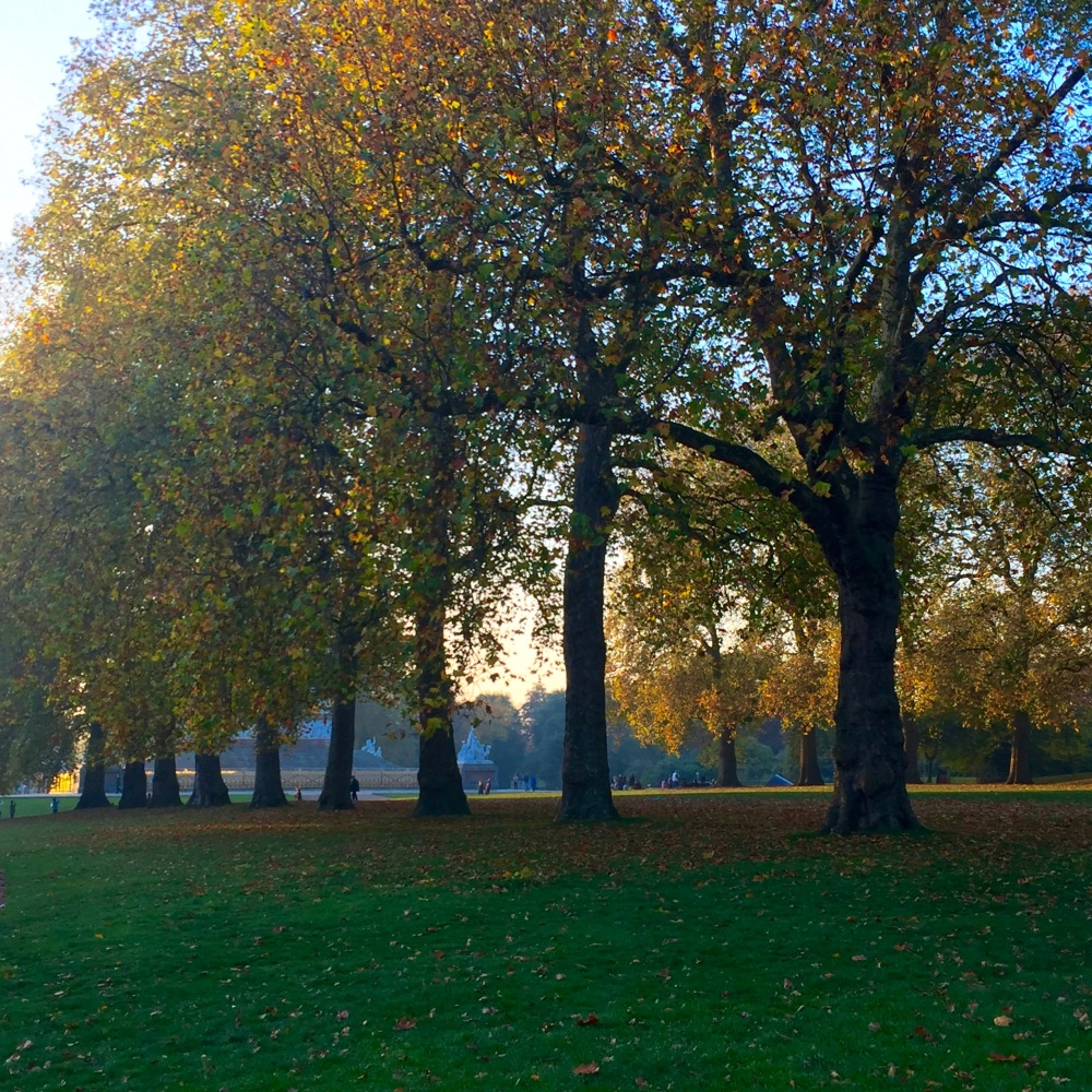 Hyde Park on a Sunday