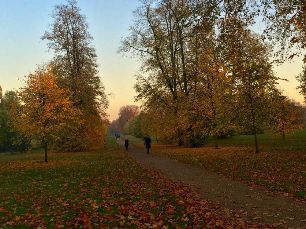 True Fall in Hyde Park