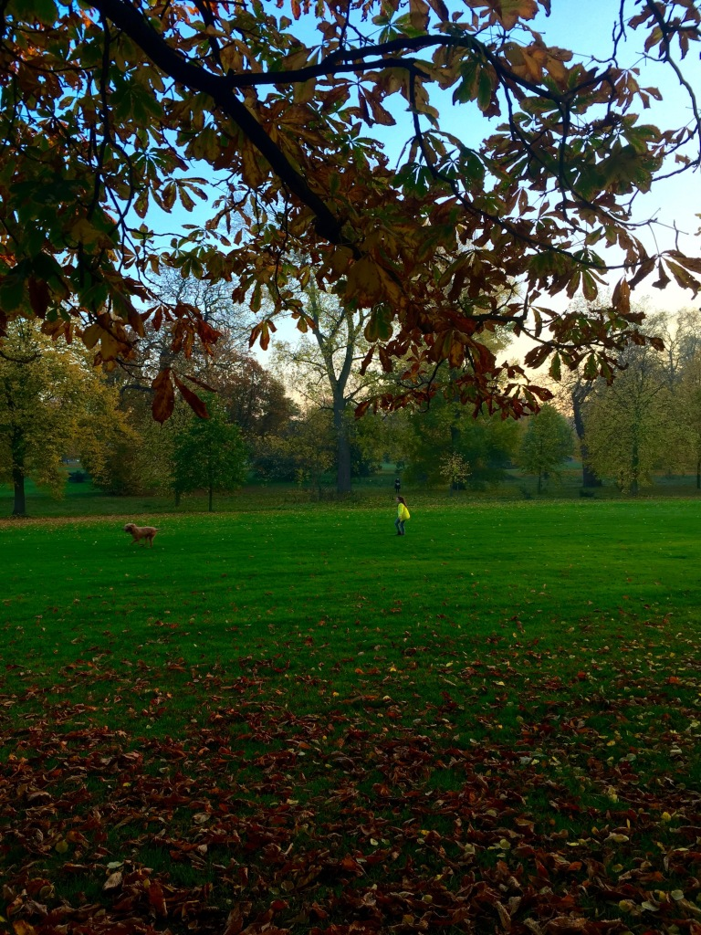 A Girl and her Dog (Hyde Park philosophizing)