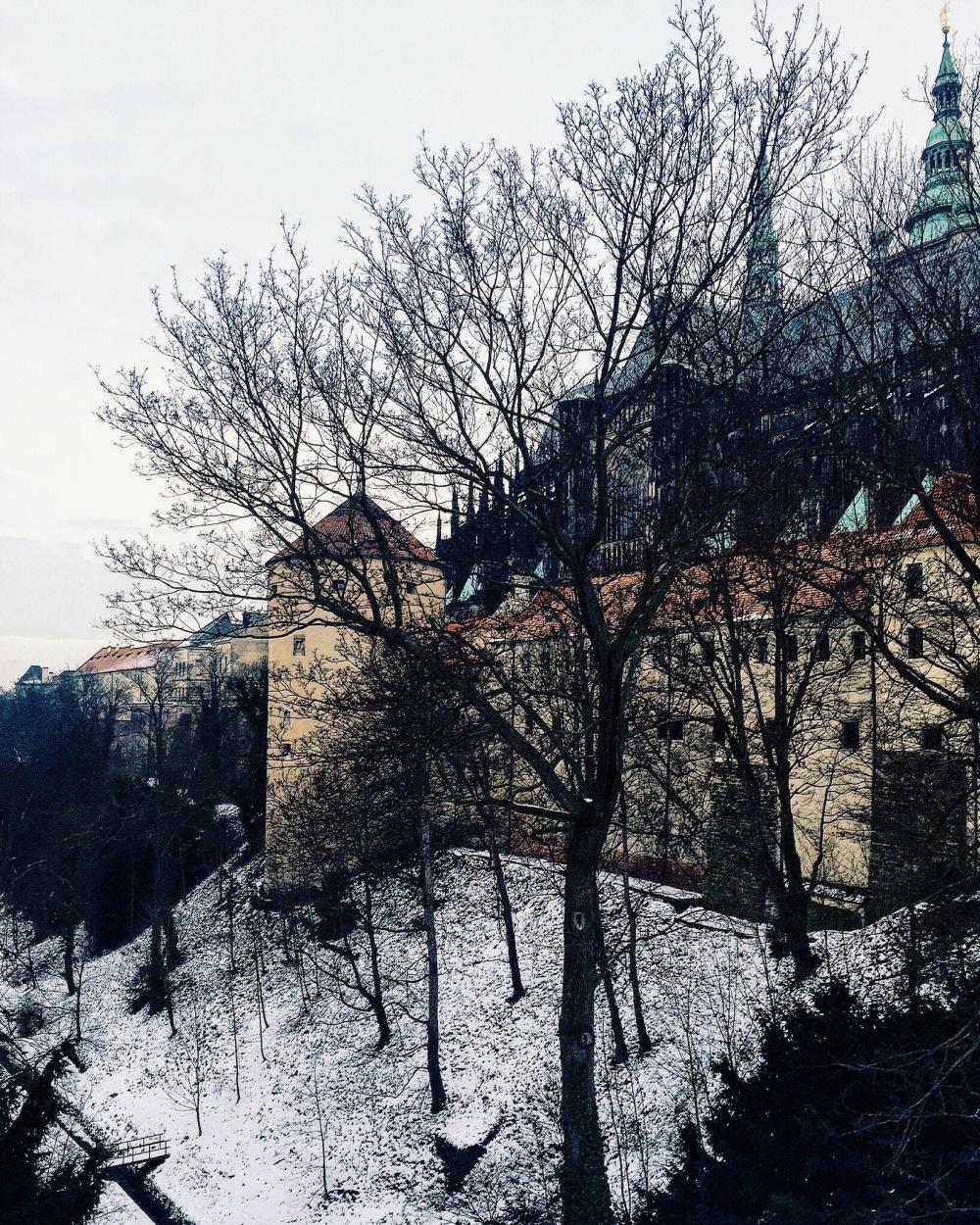 Meandering Prague